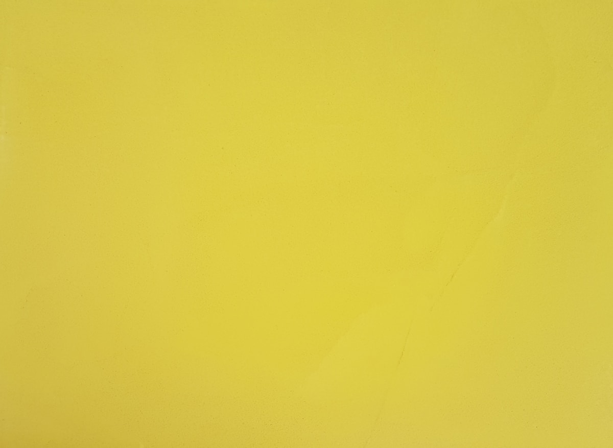 Electric Yellow 025